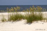 Mississippi Beaches