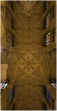 Saint Patrick's Cathedral 3
