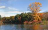 Autumn 2008 in Harriman State Park