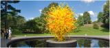 Chihuly  NY Botanical Gardens 1