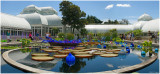 Chihuly  NY Botanical Gardens  3