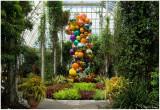 Chihuly  NY Botanical Gardens  9