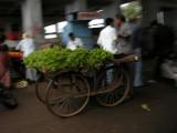 A vendor of leafy green stuff