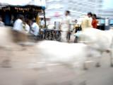 Bhopal street scene