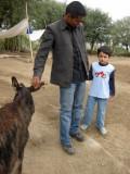 Intimidated by donkeys at the donkey orphanage.