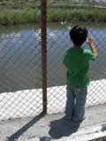 Watching for Landy fish? (2010)