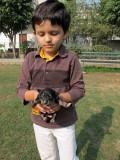Rahil and a stray newborn, Delhi 2011