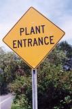 Plant Entrance Yellowframe NJ.jpg