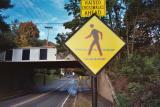 Pedestrian lighted Amherst MA.jpg