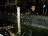 A fountain inside an Amritsar hotel