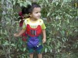 Crashing through the underbrush