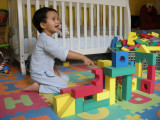 Rahil's fond of building houses for animals