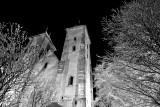 Mariakirken og trær