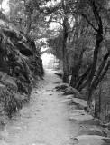 Mist trail approaching Vernal Falls area