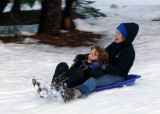 Sledding near the stables