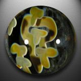 Artist: Tod Brown  Size: 2.01  Type: Lampworked Boro