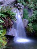 Charleson Park waterfall - chrome colour