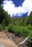 Klahhane Ridge