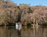 IMG_4351 wakulla river.jpg