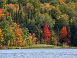 Fall Colors 2008.jpg