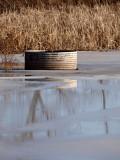 The ol Water Trough 2.jpg