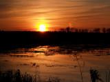Sunset at Carlos Avery.jpg