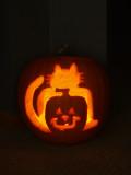 Cat Pumpkin.jpg