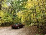Fall at Carlos Avery-Buick.jpg