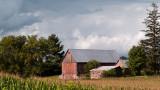Faded Barn in Corn Field rp.jpg