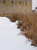 Minnesotas Grasses Lead to the Old Fort.jpg