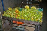 Cart of fruits