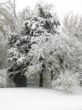 Enid, Ok Snow 2-28-09