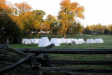 The Encampment (Colonial Troops)