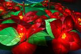 Silken Poinsettias