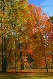 Kentucky in the fall