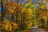 Rural Kentucky road