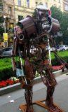 A Street Robot in Prague
