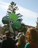 Shamrock for Peace