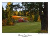 Harvest Barn Scene.jpg