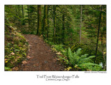 Trail From Weisendanger Falls.jpg
