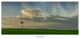 Sallys Windmill Pano.jpg