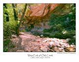 West Fork of Oak Creek.jpg