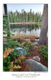Siesta Lake From The Woods.jpg