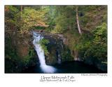 Upper Multnomah Falls.jpg