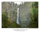 Foggy Multnomah Perspective.jpg  (Up To 30 x 45)