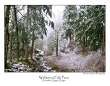 Wahkeena Falls Pano.jpg