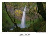 Elowah Falls Path.jpg