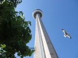 :: CN Tower, Toronto Canada ::