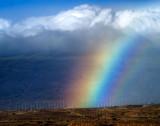 Rainbow over wind farm