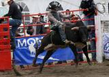Luxton Rodeo 2006